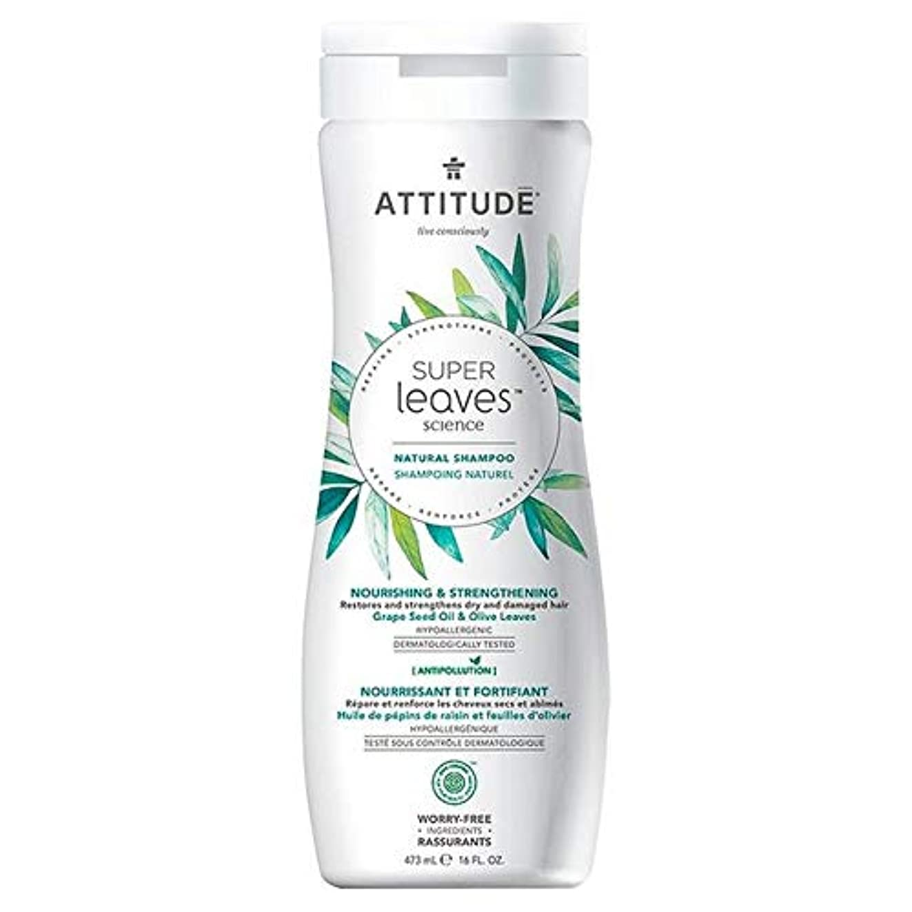 病的共産主義者岸[Attitude ] 姿勢スーパーはシャンプー栄養&強化473ミリリットルの葉 - Attitude Super Leaves Shampoo Nourishing & Strengthening 473ml [並行輸入品]