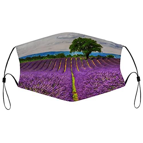 Lavender Field Scenic, Francia Face Ma_sk - Co-ver facial lavable y reutilizable con bucle ajustable a prueba de polvo, protector bucal para hombres y mujeres actividades al aire libre