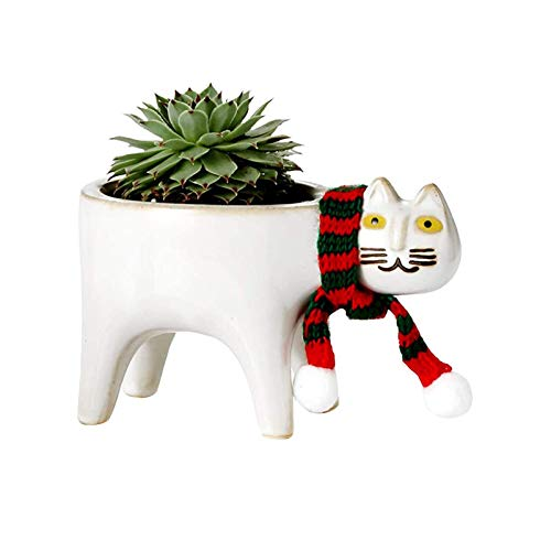 TARTIERY Bonitos maceteros de cerámica con animales jugosos y jugosos, de dibujos animados, jarrones jugosos, maceteros de flores, maceteros de decoración principal, para escritorio, mini ornamento