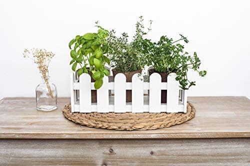 Uncle Ralph Kit di coltivazione di erbe aromatiche con fioriera in legno - Vaso tipo recinzione giardino per piante e fiori - Growing Kit semina mini orto (bianco)