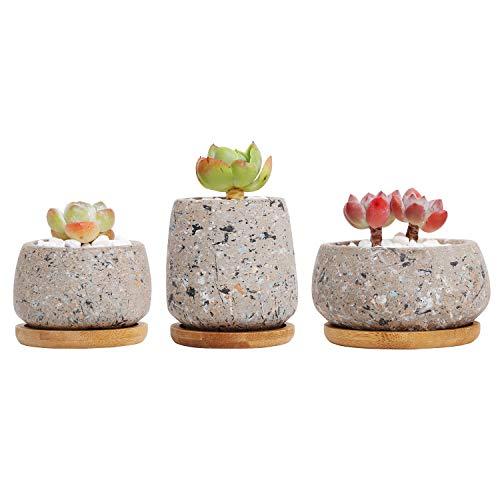 T4U Zement Sukkulenten Töpfe Rund mit Untersetzer, Beton Übertopf Klein für Kakteen Miniatur-Pflanzen, 3er-Set…