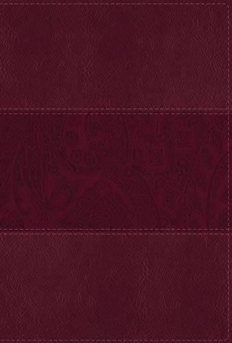Compare Textbook Prices for NIV Study Bible, Fully Revised Edition, Large Print, Leathersoft, Burgundy, Red Letter, Thumb Indexed, Comfort Print Indexed, Large Print, Revised Edition ISBN 9780310449225 by Zondervan,Barker, Kenneth L.,Strauss, Mark L.,Brown, Jeannine K.,Blomberg, Craig L.,Williams, Michael