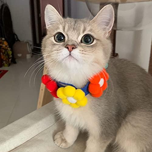 HechoVinen Collar Flores Perro Flor Mascota Flor Pajarita para Gato Cachorro Perro Collar Accesorios Decoración Collares Gattten Collar