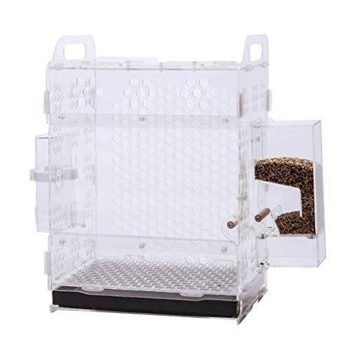 xilinshop Bird Cages for Small Birds Creative Birdcage Acrylic Parrot Cage Classic Pet Bird Cage Culture Cage Birdhouses