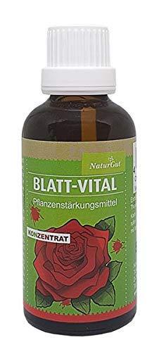 Blatt-Vital Concentré 50 Ml Pflanzenstärkungsmittel
