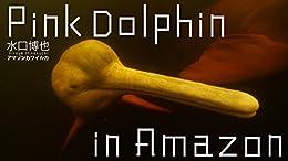 [水口博也]のアマゾンカワイルカ: Pink Dolphin in Amazon (Sphere Digital Books)
