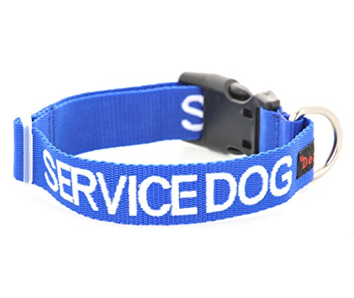 Dexil Limited Service Dog Blue Color Coded S-M L-XL Buckle Dog Collar (Do Not Disturb) Prevents Accidents by Warning Others of Your Dog in Advance (S-M Collar 10-17 Lx1 W)