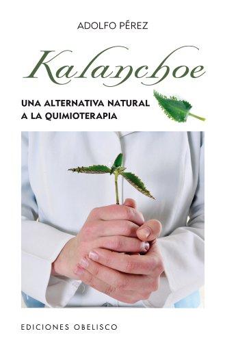 Kalanchoe (SALUD Y VIDA NATURAL)