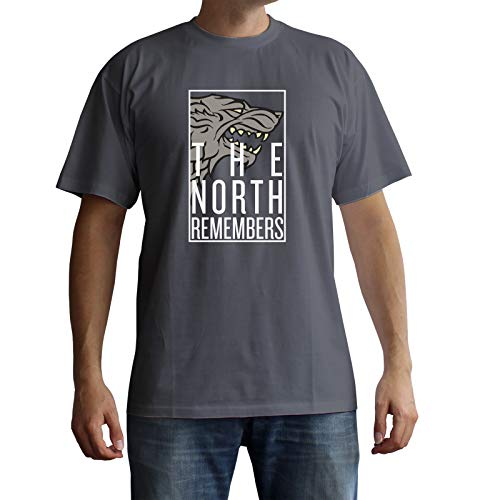 ABYstyle - Game of Thrones - T-Shirt - The North Remembers - Gris - Homme (XL)