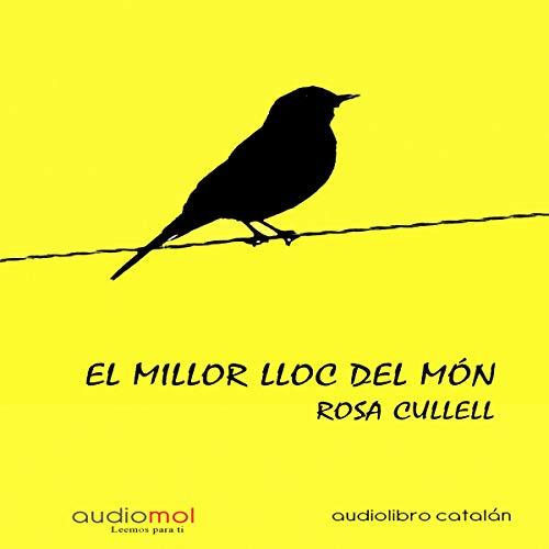 El millor lloc del món [The Best Place in the World] (Audiolibro en Catalán) audiobook cover art