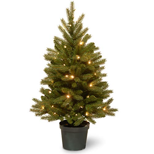 National Tree Company 'Feel Real lit Artificial Christmas Tree for Entrances Includes Pre-strung LED Lights and Pot Base - Jersey Frasier Fir - 3 ft