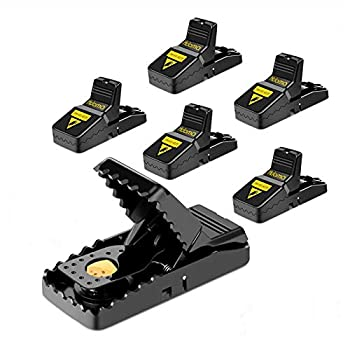 Mouse Trap Mouse Traps That Work Small Mice Trap Outdoor Indoor Best Snap Traps for Mouse/Mice Safe and Reusable 6 Pack Quick Kill Mice Traps