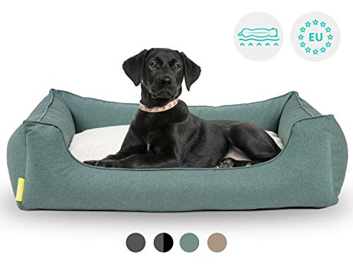 Hyggins Dreamer Perfect Hundebett | Wendekissen orthopädisch | Bezug abnehmbar und waschbar | Boden wasserabweisend (XL 117 x 80cm, Petrolgrün)