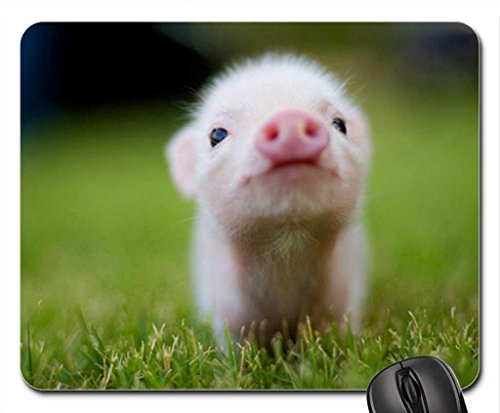 iFUOFF Mousepad, Non-Slip Rubber Mouse Pad Baby Pig Mouse Pad Mat