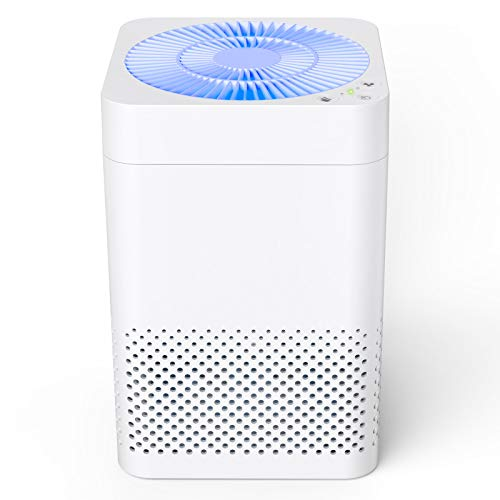 TRUSTECH Air Purifier for home