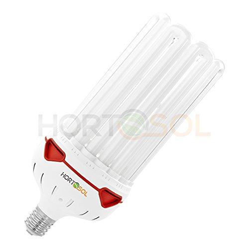 HORTOSOL 200w CFL 6400k Ampoule eco croissance bleu/blanc