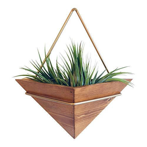 Artisanal Geometric Air Plant Holder – Made From HighQuality, Sustainably Sourced Wood – Minimalist Style & EasyToHang Design – Ethical Geometric Wall Decor Air Plant