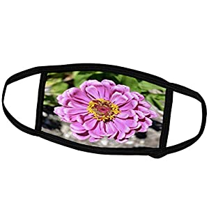 3dRose Patricia Sanders Flowers – Pink Zinnia Flower Macro Flowers Flower Photography – Face Masks (fm_30397_2)