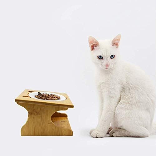 Petsoigné Cuenco para Gatos Perros Elevado Comedero Gato Perro en Cerámica/Acero Inoxidable con Soporte de Madera (1 Cuenco, Cerámica)