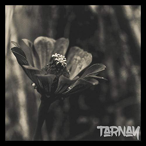 Tarnay