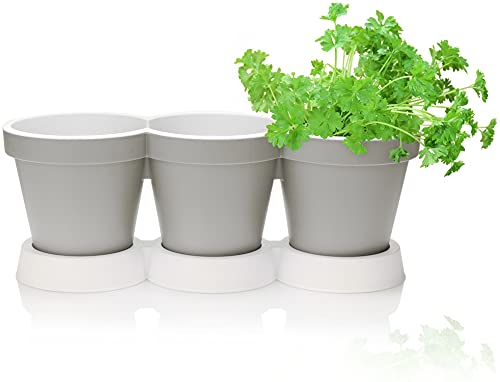 com-four® 3er Kräutertopf mit Untersetzer - Pflanzentopf für Blumen und Kräuter - Deko Blumentopf für Garten, Balkon und Wohnung (Kräutertopf - Sandfarben)