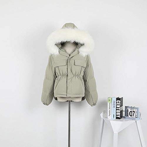 DPKDBN Parker, Winter Warm 90% Wit Eend Down Parka Vrouwen Grote Kraag Hooded Korte Jas Loose Down Outwear
