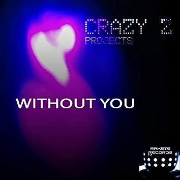 Without You (Cazintel Mix)