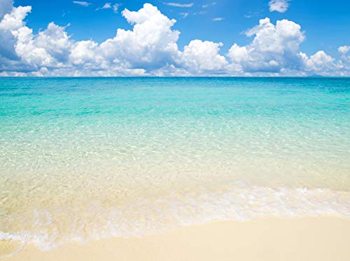Fototapete Sonne, Meer und Strand Größe: 350 x 260 cm Wandbild, Motivtapete, Vlietapete