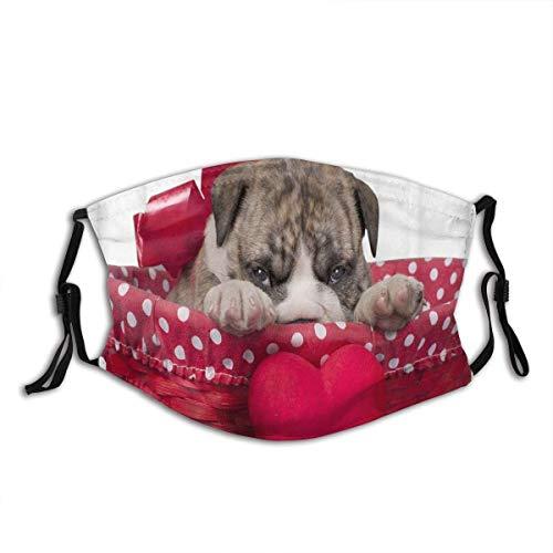 Netter englischer Bulldoggenwelpe mit Herz lokalisiert auf einem weißen Hintergrund Sturmhaube Wiederverwendbare Mundschutz-Halsmanschette