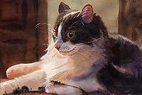 番号キットによるDIY油絵ペイントタビー猫番号キットによるDIY油絵描画キャンバス家の装飾ギフト