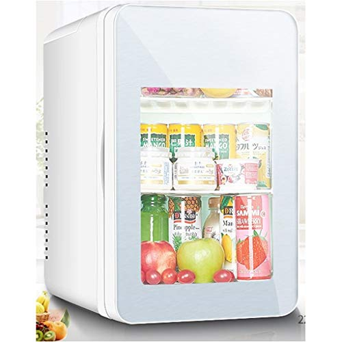 LT Draagbare mini-persoonlijke koelkast, 10 liter, auto-koelkast, kleine elektronische koeler en warmer, tricolore, kamperen, grote auto, picknick en festival Transparent Silver