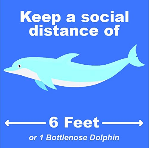 'Keep A Social Distance of 6 Feet' - COVID-19 Safety - Social Distance Dolphin - Peel & Stick Floor Stickers - 10 Pack - 9.2'x9.2' - for Tile, Concrete & Industrial Carpet - Aquariums