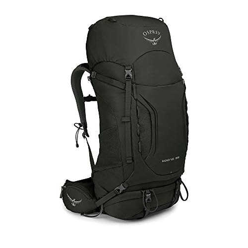 Osprey Kestrel 58 Trekkingrucksack für Männer - Picholine Green (M/L)
