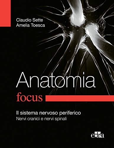 Anatomia Focus: Il sistema nervoso periferico - Nervi cranici e nervi spinali