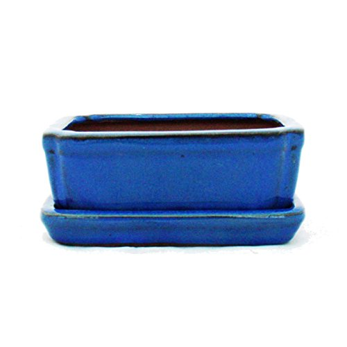 exotenherz - Bonsai-Schale mit Unterteller Gr. 1 - Blau - eckig - Modell G15 - L 12cm - B 9,5cm - H 4,5 cm