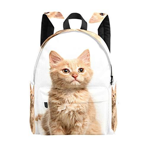 Bolsa grande para portátil con diseño de gato naranja para niñas, ligera, bolsa de viaje, mochila para ordenador portátil, para niños, hombres y mujeres