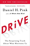 Image of Drive: The Surprising Truth About What Motivates Us