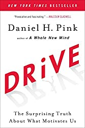 Drive - The Surprising Truth of What Motivates Us