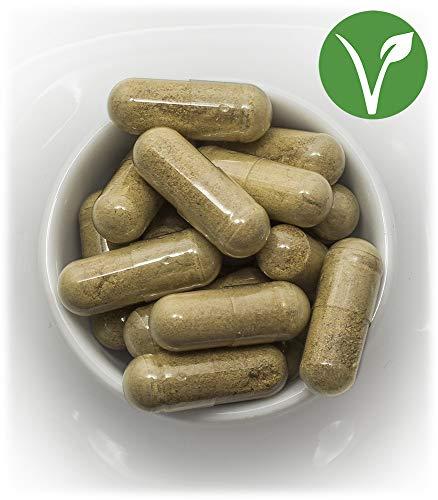Chitosan Nopal 400 gélules en végétal dosées à 500mg l'unité