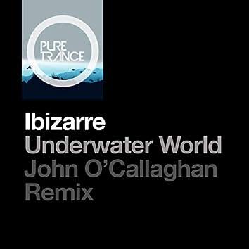 Underwater World (John O'Callaghan Remix)