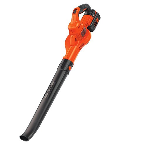 BLACK+DECKER 40V MAX Cordless Sweeper (LSW40C)