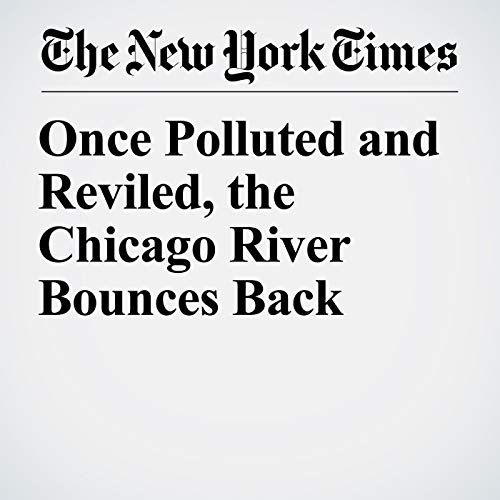 Once Polluted and Reviled, the Chicago River Bounces Back copertina