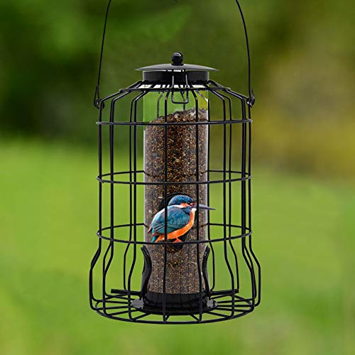 FORUP Caged Tube Feeder, Squirrel Proof Wild Bird Feeder, Outdoor Birdfeeder with Large Metal Seed...