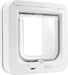 A white cat door, also called a cat flap