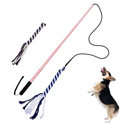 Weesey Pet Training Stick, Interactivo Hundeschlepperspielzeug, ausziehbarer Flirt-Teaser-Zauberstab con 2 Baumwollseilen para Divertidos Gehorsamstraining & Training & Jagen