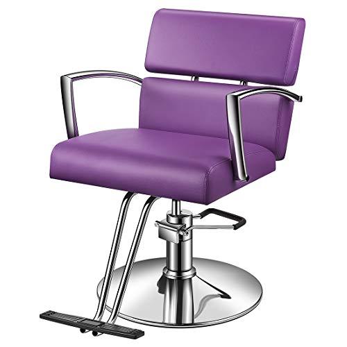 Baasha Beauty Salon Chair Hydraulic Styling Chair, Purple Styling Chair for Salon, Beauty Equipment Salon Chairs for Hair Stylist, Hair Stylist Chair, Hydraulic Chair