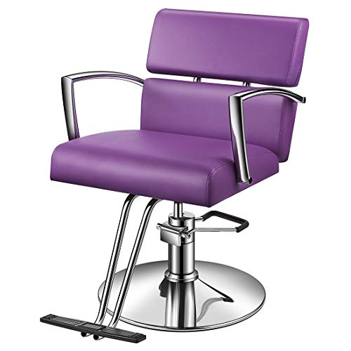Baasha Beauty Salon Chair Hydraulic Styling Chair, Purple Styling Chair for Salon, Beauty Equipment Salon Chairs for Hair Stylist, Hair Stylist Chair, Hydraulic Chair