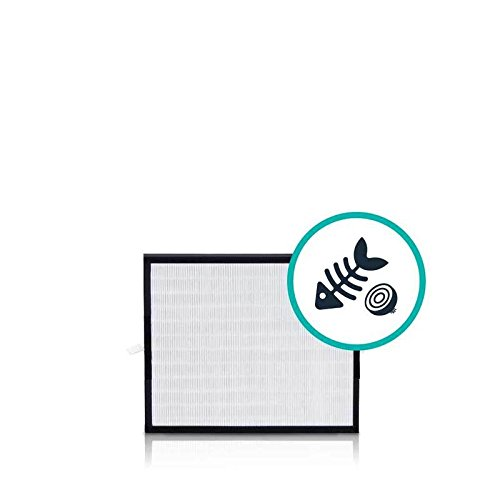 Why Should You Buy Alen (BF25A HEPA-Fresh Replacement Filter for A350 and A375 Air Purifiers, 1-Pack