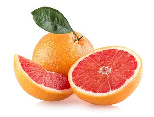 Grapefruit, direkt aus Spanien, Sorte Star Ruby, süß und aromatisch, 5kg Plantagen Express