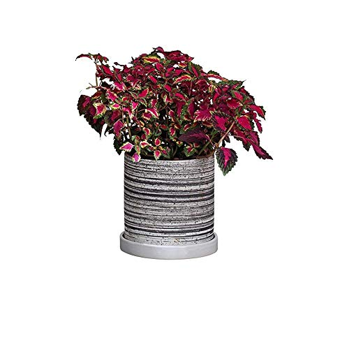 Fantastic Deal! Faturt Handmade Flower Pot Art Ceramic Flower Pot Modern European Style White Palm F...